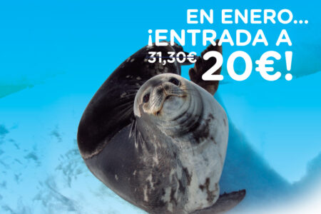 20 dto oceanografic