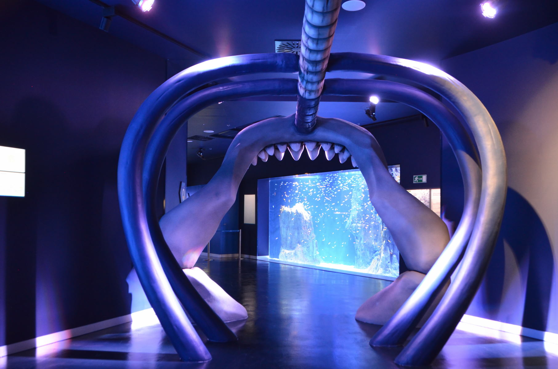 Atlantis Aquarium Madrid - Entrada
